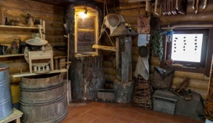 Дом бортника   Дудутки