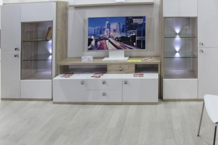 Электро-камины  на выставке  Мебель - 2017  г. Минск  Футбольный Манеж  с 14 по 17 сентября 2016 года