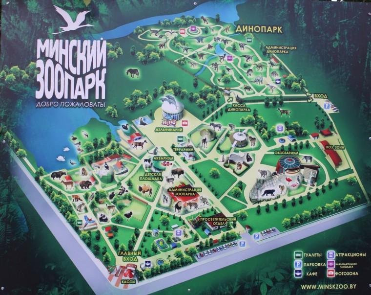 Карта Минского зоопарка  27 августа 2016  г. Минск  улица Ташкентская  40