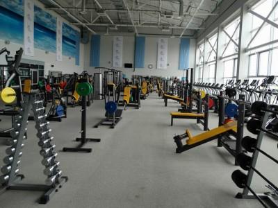 Занятия в тренажерном зале <BR>(Аквапарк 'Лебяжий' , г. Минск , проспект Победителей, 120)