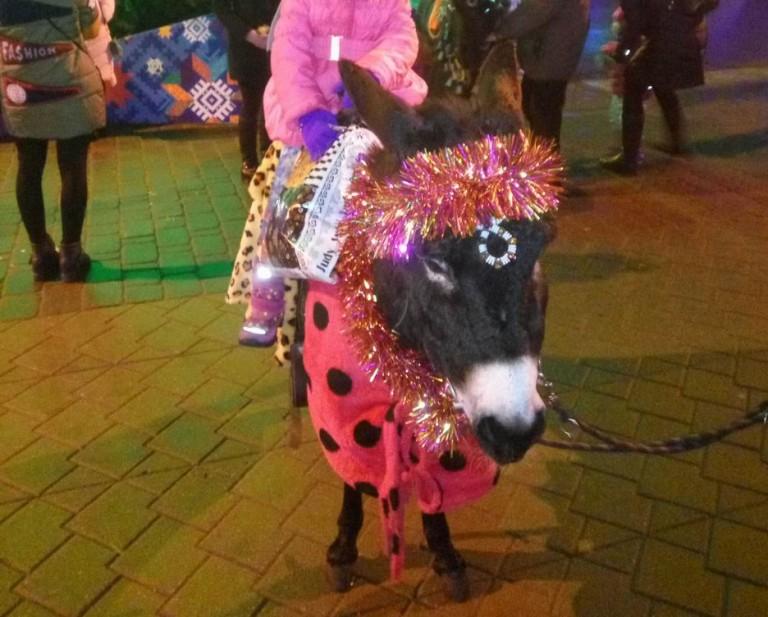 Катание на ослике  у Дворца спорта  г. Минск  25 декабря 2016