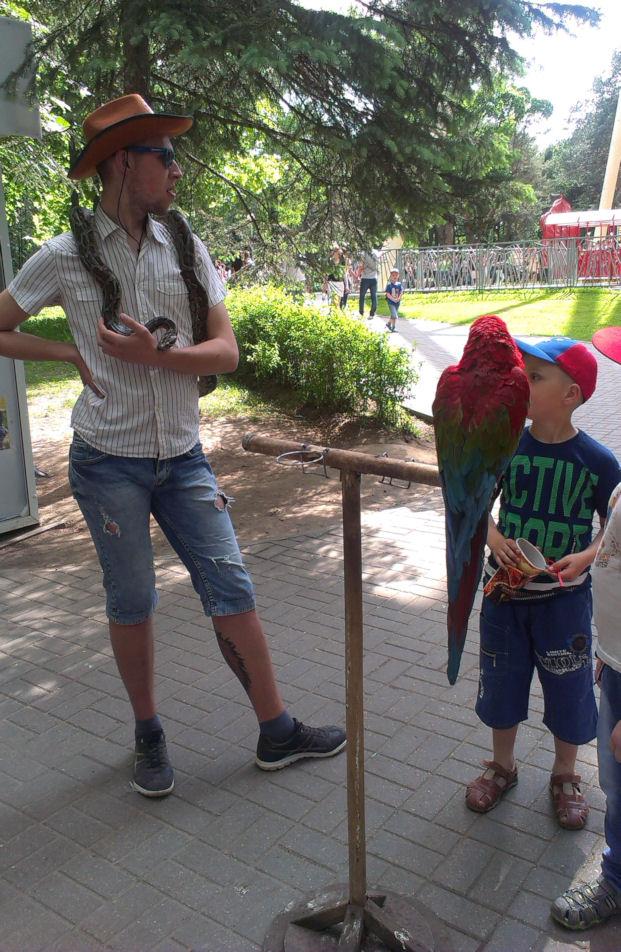 сфотографироваться со змеей и попугаем  в парке Горького  г. Минск 28 мая 2016