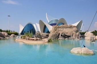 Oceanorafico - самый большой аквариум в Европе