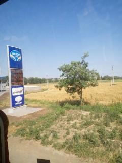 Заправка  между Одессой и Затокой  утро 10:11  12 июля 2017