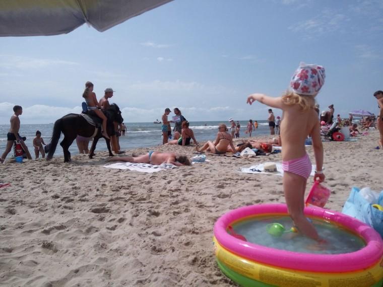 Пляж  море  лошадка  детский бассейн  База отдыха  Рось   время 10:45 утро  13 июля 2017