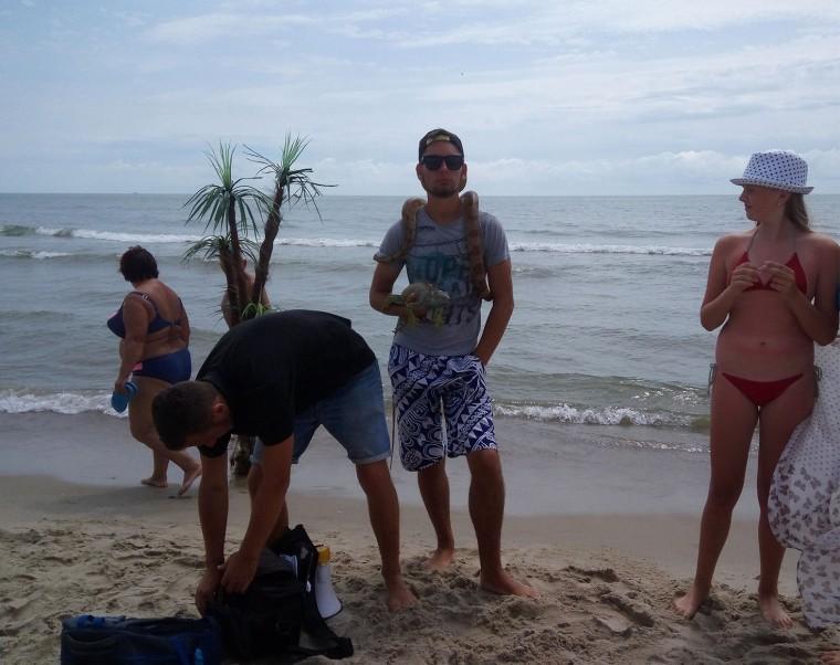 Фото с игуаной и змеей  море  пляж  База отдыха  Рось   время 11:36 утро  13 июля 2017