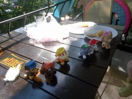 Собачки  Щенячий патруль   База отдыха  Рось   15 июля 2017
